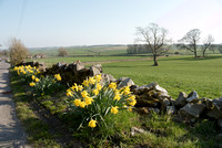 Roadside View, Peak District in Spring